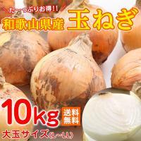 和歌山県産の新玉ねぎです。  サイズ:大玉サイズ(約L〜LLサイズ)  のし等・ギフト対応不可  無...