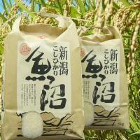 2017年度(平成29年度産)新米 [検査済]地元農家のお米 検査一等米・白米2kg  魚沼産の中で...