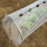 品名 DAIM おてがる君 野菜苗 保温トンネル 特長 野菜苗を霜や風からまもります。 換気用穴が ...