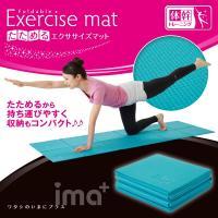 日々のストレッチ運動・体幹トレーニング、ヨガ・ティラピスなど。  直接、床でするのは、固くて背中やひ...