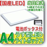 ライトニング【電池BOX付】NEW LEDトレーサー(NA4-06)●色の再現性が高い【日亜化学製高...