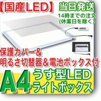 ライトニング 【保護カバー&固定式明るさ切替器&電池BOX】  NEW LEDトレー...