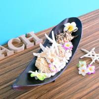 貝殻 スターフィッシュ ビーチデコレーション インテリアトレー1  ハワイアン雑貨 インテリア雑貨 天然シェル  likebeach