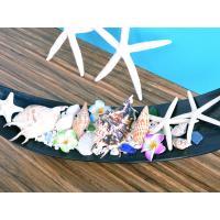 貝殻 シェル スターフィッシュ ビーチデコレーション インテリアトレー4 ハワイアン雑貨 インテリア雑貨|likebeach|04