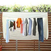 カバー 雨よけ 花粉 黄砂 ほこり 洗濯物保護カバー 洗濯日和ネクスト ワイド 幅160cm ( 花粉よけ 黄砂よけ ほこりよけ )