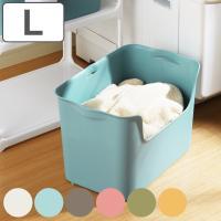 収納ボックス カタス L カラーボックス インナーボックス 引き出し ( 収納ケース 収納 プラスチック ケース ボックス )