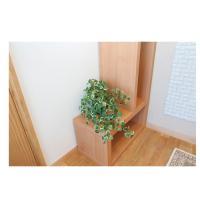 ミムラ 観葉植物 光触媒 人工 25cm 鉢付き 557A60-37 インテリアグリーン アートグリーン テーブルタイプ