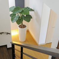 ★送料無料★アートくわず芋 2A3301-840 観葉植物 人気 光触媒