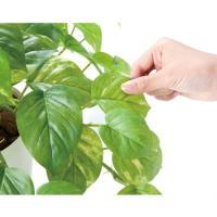 フレッシュポトス H115cm 鉢植え 造花 3A4503-200 送料無料