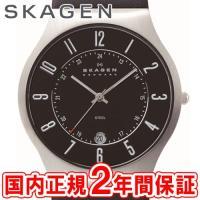SKAGEN(スカーゲン)  ■カテゴリー名  STEEL(スチール)  ■文字盤カラー  シャイニ...