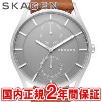SKAGEN スカーゲン メンズ腕時計 HOLST スチール・レザー 40mm グレー/シルバー/ブ...