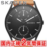 SKAGEN スカーゲン メンズ腕時計 HOLST スチール・レザー 40mm ブルー/ライトブラウ...