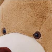 ぬいぐるみ 特大 くま/テディベア 可愛い熊 動物 大きい くまぬいぐるみコストコ クマ ぬいぐるみ (2m)|lovesound|03