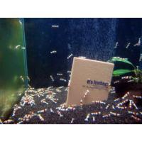 サイズ10センチ×7.5センチ  水槽立ち上げ時の白にごりの除去 アンモニアの吸着 強力な吸着効果は...
