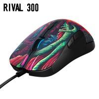 Rival300  ※詳しくはメーカーホームページ等ご確認ください。   ※配送について※ 当店では...