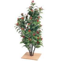 人工植物 センリョウ 板付 80cm 室内用