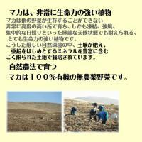 有機マカ粒 高吸収タイプ 100g入り 5袋セット 通常より1500円お得  マカ サプリメント  JAS認定|maca-ifweb|02