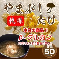 ヤマブシタケは、中国では古来より宮廷料理の食材として珍重されてきました。 そのヤマブシタケに「ヘリセ...