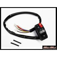 e21-6113rウインカースイッチ ハイロー切替 ホーンボタン 集合スイッチ コンパクト スリム