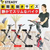 フィットネスバイク 折りたたみ式 静音 小型 心拍数計測 エアロバイク [メーカー1年保証] STEADY(ステディ) ST102