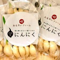 「乙村式にんにく」は、一粒ずつ手仕事で発芽させ、農薬を使いません。高度な浄水技術でつくられた北九州市...