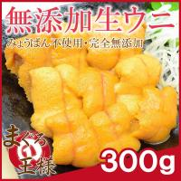 生ウニ 生うに 冷凍 無添加 天然 300g 100g×3パック(ウニ うに 雲丹)