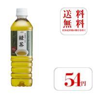 お茶 お茶屋さんの緑茶 送料無料 500ml ペットボトル 24本入2ケース 合計48本