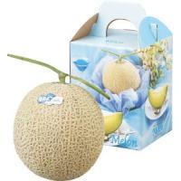 ■商品内容 「花咲アールスメロン」は、果実にしっかりと栄養が行き渡るように、1株のツルに1玉しか結実...