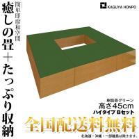 畳ユニット 樹脂畳ユニット [ グリーン ハイタイプ Bセット ] 幅180cm×奥行210cm×高さ45cm 送料無料 27330