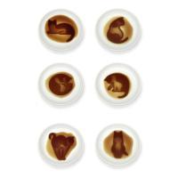 ネコ醤油皿 6種×各1枚...