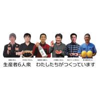 鳥取県湯梨浜町 ご当地アイス「ゆりはま愛す」6個セット marchen-t 02