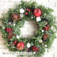 クリスマスリース 壁 玄関 飾り 姫リンゴ フォレスト フレッシュ リース 30cm おしゃれ 冬 ギフト クリスマス プレゼント オーナメント 送料無料