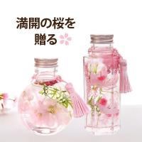 ハーバリウム プレゼント 桜 『 桜 ハーバリウム S 』 さくら ハーバリウム 花 ギフト プレゼント 敬老の日 ギフト