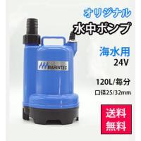 水中ポンプ 24V 海水 排水 イケス バッテリー M24-120 極性あり