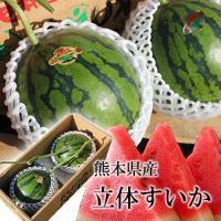 【 熊本県産 】 立体スイカ 小玉 すいか 2玉入り  糖度の安定した美しく美味しいすいかです。夏の...