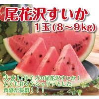 """◆夏すいか生産量日本一""""山形県尾花沢市(おばなざわ)""""のすいかです。シャリッ!とした歯ごたえと大きい..."""