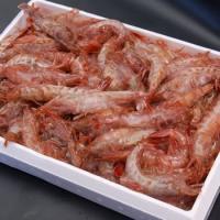 ◆商品内容 浜坂産 ドロエビ・ガラエビ(冷凍) 大小混ざり 約600-800g程度(目安:約30匹以...