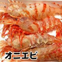 ◆商品内容 浜坂産 おにえび(冷凍)有頭  サイズ混ざり(6-7尾前後入で約250g前後)  こちら...