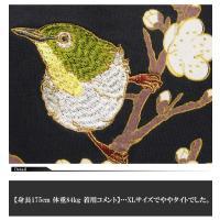 華鳥風月[かちょうふうげつ] 目白と鶯 和柄ロングTシャツ/ロンT/長袖/373151/送料無料