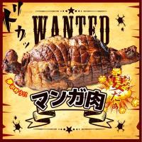 ☆大きさ 安心で、旨みたっぷりの国産豚肉300g使用。 大人1〜2人前です。 ※3〜6人前のマンガ肉...
