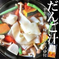 半生だんご汁 団子汁 九州名物 140g×2 2食分 つゆ付き 送料無料 ポイント消化