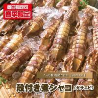 ■商品内容 : 殻付き煮シャコ(ガサエビ)/500g前後  ■産地 : 青森県 or 北海道 or ...
