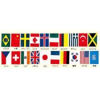 国旗 旗 ●商品名:ビニール万国旗 20ヵ国連続旗 K33-3 11m 旗サイズ:265mm×380...