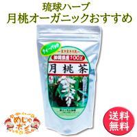 月桃茶 ティーパック 沖縄県産 健康茶 50g(2g×25包) お土産 おすすめ