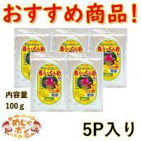 ウコン サプリメント 春ウコン 沖縄県産 ウコン春うっちん粉 (100g)×5個セット お土産 通販 おすすめ