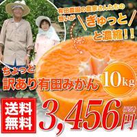 【商品】訳あり極み有田みかん             【内容】10.0kg (風袋込み)      ...