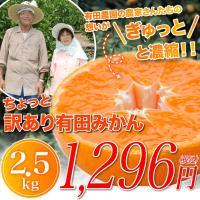 【商品】訳あり極み有田みかん             【内容】2.5kg (風袋込み)       ...