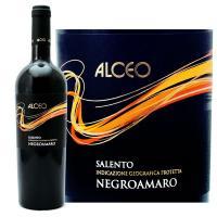 紫がかった濃いルビー色で、コクがある赤ワイン。黒コショウ、クローブ、シナモンのスパイシーな香りと、ダ...