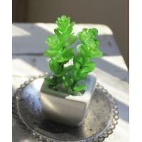 サキュレントプランツ S Bタイプ 消臭アーティフィシャルグリーン ARTIFICIAL GREEN  SUCCULENT PLANTS イミテーション