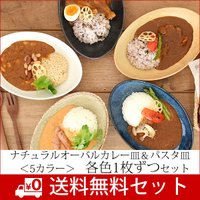 食器 セット 和食器 カレー皿 新生活 おしゃれ パスタ皿 美濃焼 (送料無料)ナチュラルオーバル5色セット
